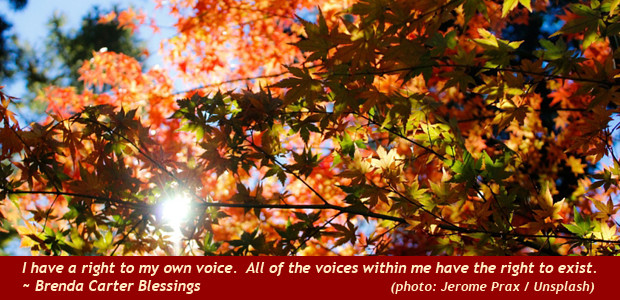 Voices-right-to-exist-ed-620x302